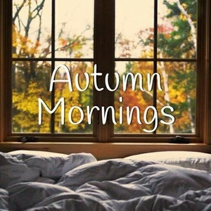 article and autumn mornings fall image