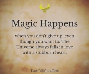 law of attraction, law of attraction tips, and quotes image
