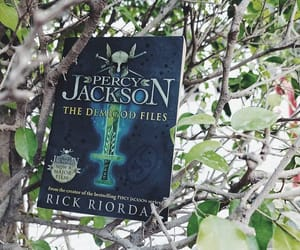 book, books, and percy jackson image