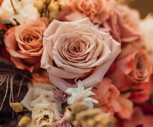 https://instagram.com/neonweddings?utm_medium=copy_link