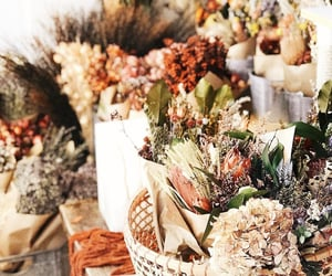 flowers, flowers shop, and flowers market image