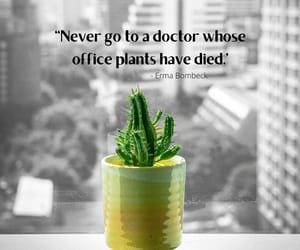 Died, doctor, and plants image