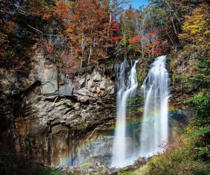 japan, nature, and rainbow image
