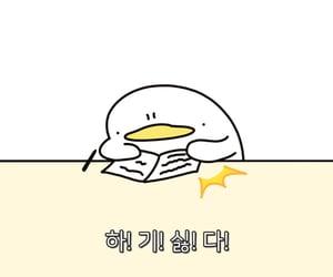 korean, meme, and 짤 image