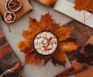 apple, coffe, and cozy image