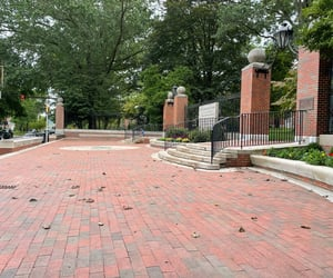 bricks, college, and fall image