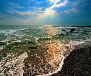 I really want to go to the sea