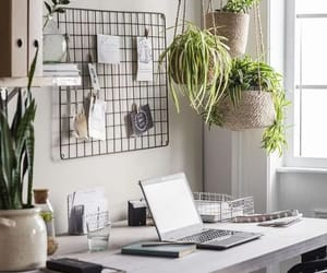 The workplace is very important for every person. It needs aesthetics