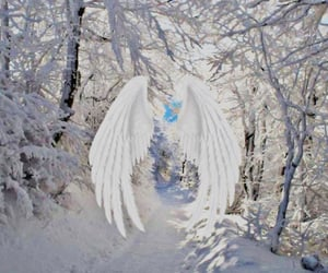 aesthetic, angel, and pretty image