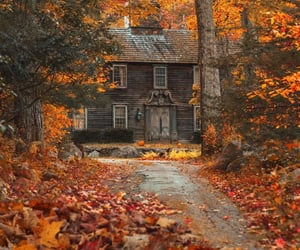 autumn, exterior, and nature image