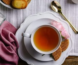 biscuit, cozy, and coffee time image