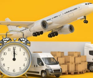 movers, moving services, and international services image