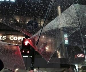 aesthetic, rain, and umbrella image
