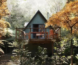 cabin, nature, and woods image