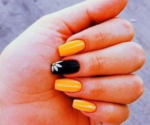 black, orange, and Blanc image