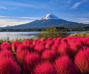 autumn colors, mountain, and scenes image