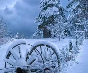 Winter on the farm....