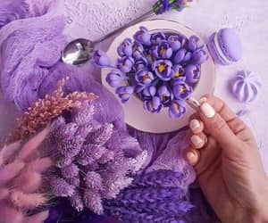 Lilac and Lavender