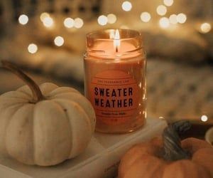 autumn, fall, and autumnal image
