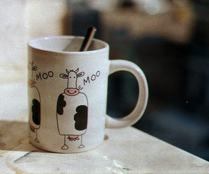cow, coffee, and cup image