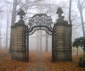 gate, black and white, and photography image