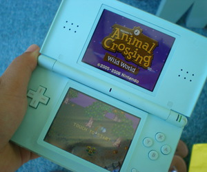 animal crossing, animals, and blue image