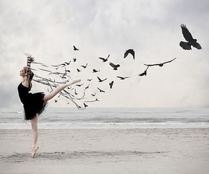 ballerina, birds, and free image