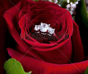 flower, I DO, and marriage image