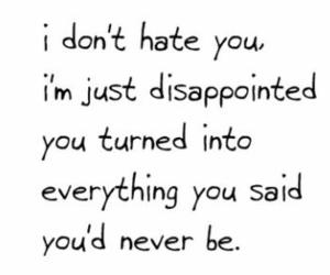 disappointed, quotes, and hate image