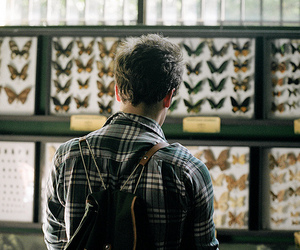 boy, butterfly, and vintage image