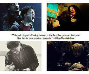harry potter, pain, and snape image