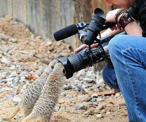 photographer and cute image