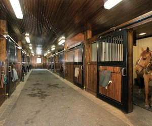 barn, stable, and horse image