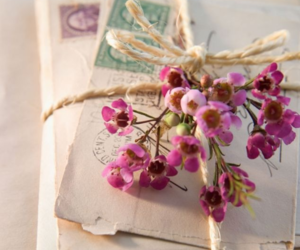 flowers, letters, and vintage image