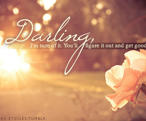photography, rose, and text image