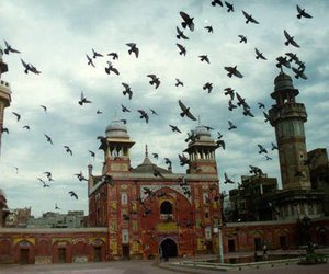 birds, building, and islam image