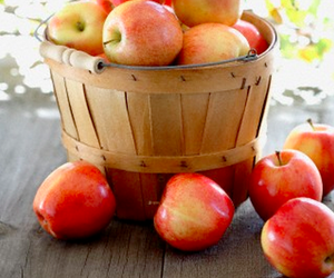 fruit and apple image