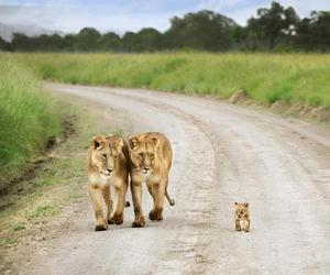 Kenya, aunt and mother, and by david lazar image