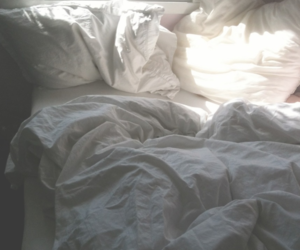 comfy, liked, and pillows image