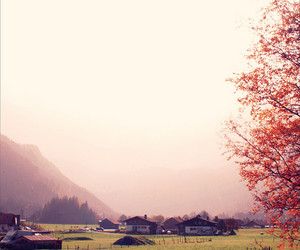 autumn, hues, and misty image