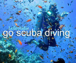 scuba diving and before i die image