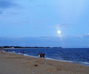 beach, beauty, and light image