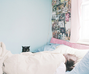 girl, bed, and cat image