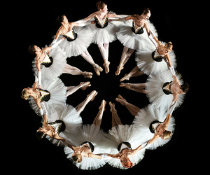 ballet, ballerina, and dance image