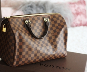 classy, Louis Vuitton, and luxury image