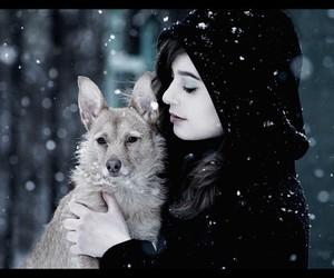 girl, snow, and dog image
