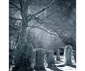 cemitery, cold, and frozen image