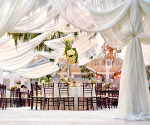 wedding, white, and luxury image