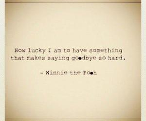 winnie the pooh, quotes, and goodbye image