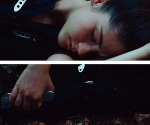 Clove and the hunger games image